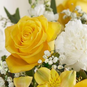 Cheer Up Friend - Jaylas Flowers - Nappanee Florist IN