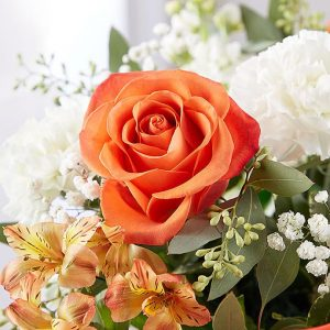 Citrus Celebration - Jaylas Flowers - Nappanee Florist IN Fresh Orange Flowers