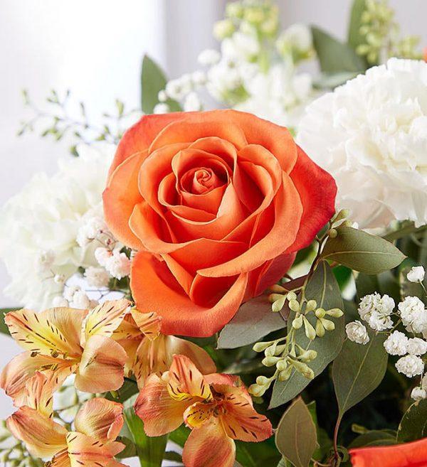 Citrus Celebration - Jaylas Flowers - Nappanee Florist IN Fresh Orange Flowers