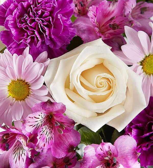 Lovily Lavender - Jaylas Flowers - Nappanee Florist IN Purple Fresh Flowers