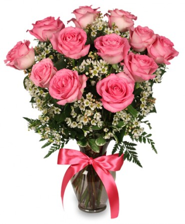 Prime time Pink Roses